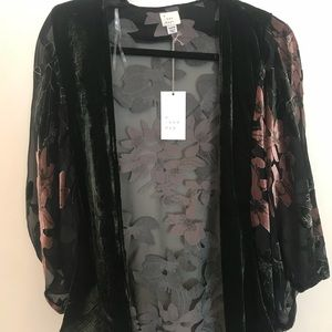 Tops - NWT Sheer and Velvet Top
